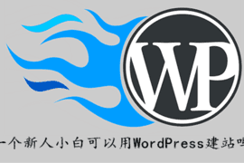 一个新人小白可以用WordPress建站吗?